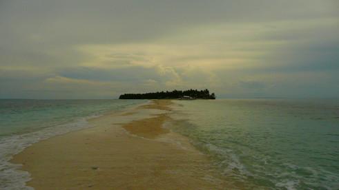 Cousine de Malapascua Island, Philippines