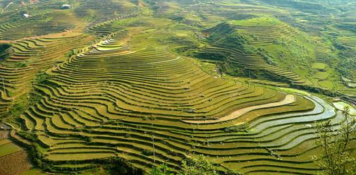 Environs de Sapa, Vietnam