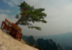 photographe no filter francais parisien parisian photographer travel traveler photography photographie french voyage visit voyageur angle home tour brice retailleau quintessence de voisinage bright website backpack life backpacker beauty best composition perspective pure light colorful colourful couleurs scenic view point of de vue viewpoint trip tour du monde around the world earth wonderful beautiful gorgeous amazing journey destination tourisme tourism backpacking , été summer spring printemps outdoor outdoors outside exterieur exterior nature landscape paysage paysaje scenery panorama tree trees flora flore arbre arbres vegetation flore hike hiking randonnée trek trekking montagne montagnes mountain mountains  asia asian asie china chine chinese huashan hua shan mont mount shaanxi