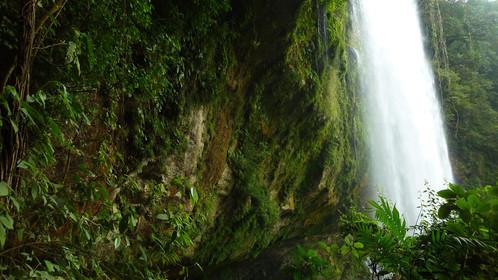 Misol Há, Chiapas, Mexique