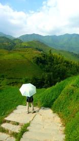 Rizières du dos du dragon, Guangxi, Chine