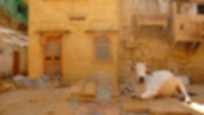 photographe no filter francais parisien parisian photographer travel traveler photography photographie french voyage visit voyageur angle home tour brice retailleau quintessence de voisinage bright website backpack life backpacker beauty best composition perspective pure light colorful colourful couleurs scenic view point of de vue viewpoint trip tour du monde around the world earth wonderful beautiful gorgeous amazing journey destination tourisme tourism backpacking , été summer spring printemps outdoor outdoors outside exterieur exterior cityscape city urban urbain ville rue street architecture building style design construction structure facade front buildings skyline animals animaux animal fauna faune wildlife nature asia asie asian india inde indian Jesalmer rajasthan rajastan cow cows vache vaches sacred sacree