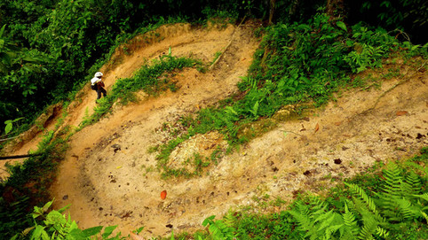 Trek de la Ciudad Perdida, Colombie