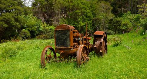 Queen Charlotte Track, Nouvelle-Zélande