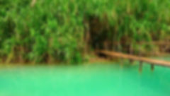 photographe no filter francais french photographer travel traveler photography photographie voyage voyageur angle home brice retailleau quintessence de voisinage bright website backpack backpacking backpacker beauty best composition perspective pure light colorful colourful couleurs scenic view point of de vue viewpoint trip tour du monde around the world earth wonderful beautiful gorgeous amazing journey destination tourisme tourism backpacking , été summer outdoor outdoors bridge pont puente nature landscape paysage paysaje scenery waterscape water river riviere tree trees flora flore arbre arbres vegetation flore central america amerique centrale latina mexico mexique chiapas agua azul cascadas