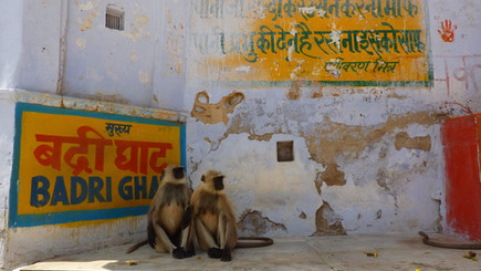 Varanasi, Uttar Pradesh, Inde