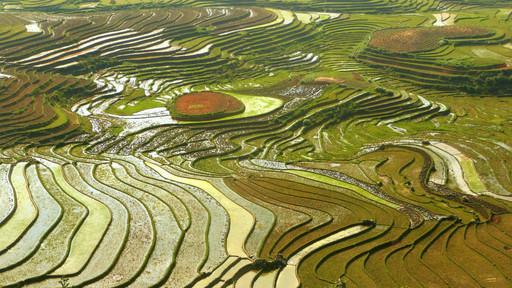 Banlieue de Sapa, Vietnam