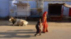 photograhe francais french photographer travel photography photographie voyage landscape paysage cityscape street people family cow india rajastan pushkar