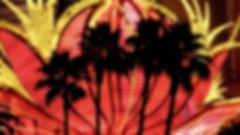 photographe no filter francais parisien parisian photographer travel traveler photography photographie french voyage voyageur angle home tour brice retailleau quintessence de voisinage bright website backpack life backpacker beauty best composition perspective pure light colorful colourful couleurs scenic view point of de vue viewpoint trip tour du monde around the world earth wonderful beautiful gorgeous amazing journey destination tourisme tourism backpacking , été summer cityscape city urban urbain ville rue street architecture building style design construction structure monument facade front lights art artwork tree trees flora flore arbre arbres vegetation flore palm palmier palmiers nuit night time nightscape dark noche usa nevada amerique las vegas casino neon neons flamingo