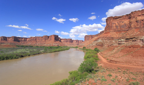 Green River, Island in the Sky District, Canyonlands NP, Utah, USA