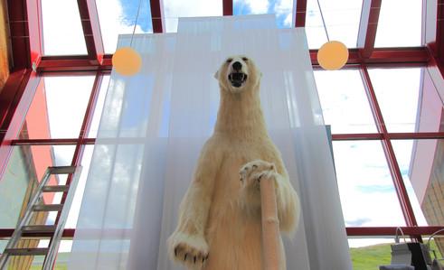 Souvenir shop at the Polar Circle, Norway