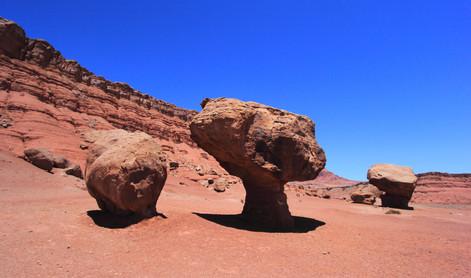 Marble Canyon, Arizona, USA