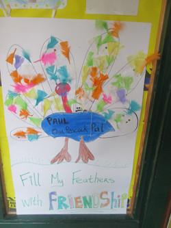 Friendship Week Peacock