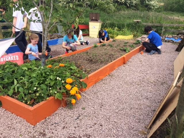 School Garden Tidy