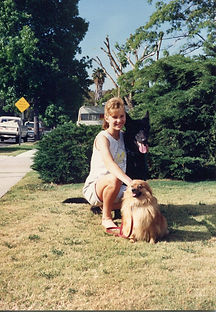 West Arlington dog trainer
