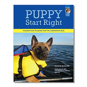 puppy training West Arlington, Mansfield, Texas