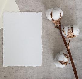 100-cotton-paper-1525582429-3833626.png