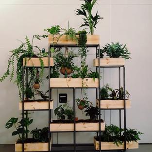 Educatieve plantenmuur