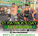 St.Patrick's Day Fun Run-Hurry for huge savings!
