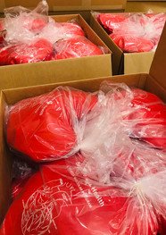 The Cardiac Bear's Headling Hearts Pillows