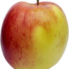 red-apple-1260546_1920.jpg