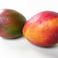 mango-164572_1280.jpg