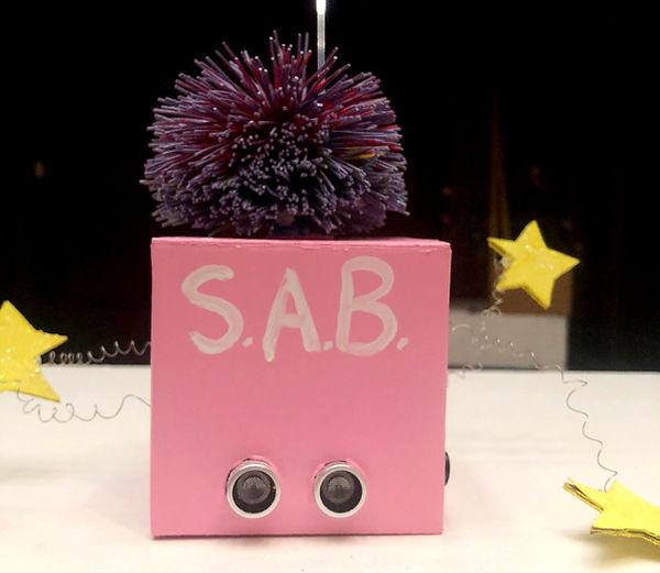 S.A.B.+1.jpg