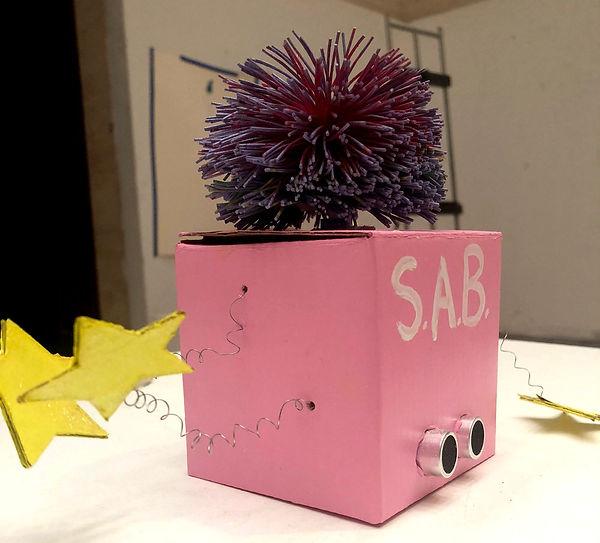 S.A.B.+2.jpg