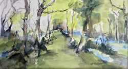 Shirley Anne Owen  Yr Hen Goedwig 31  mixed media on watercolour paper  55 x 30.5cm