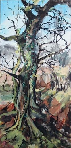 Shirley Anne Owen  Yr Hen Goedwig 30   mixed media on canvas  40 x 85 cm