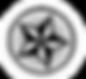 Черно-белая звезда в Круге