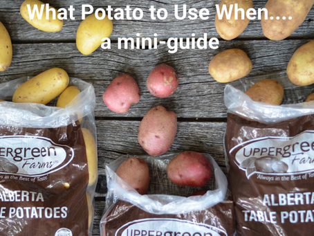 What Potato To Use
