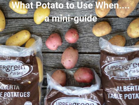 What Potato To Use