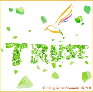 TRUST Guiding Sense Solutions.jpg