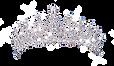 229-2298364_queen-freddiemercury-tiara-s