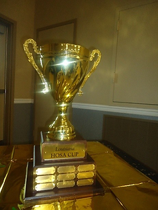 LA HOSA Cup.PNG