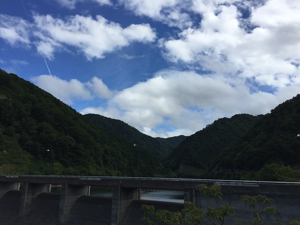 神室ダムにはアブやツナギがたくさんいました。 (さ)撮影