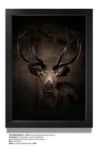 The deer beauty text
