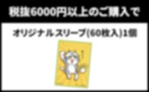 購入6000-min (1).png