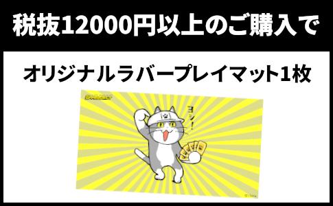 購入12000-min (2).png