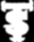 Travis Shallow logo