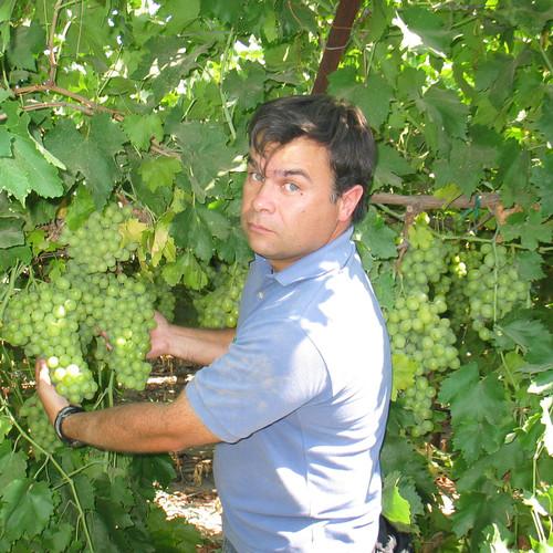 Carlos Sierra Grape Intern 2009a.jpg