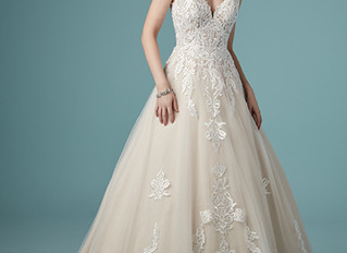 NEW 2020 Collection gowns now in!
