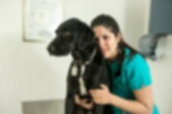Atención veterinaria consciente