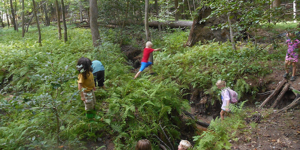 Single Day Forest Walk July 6 9:00-1:00 Ages 5-11