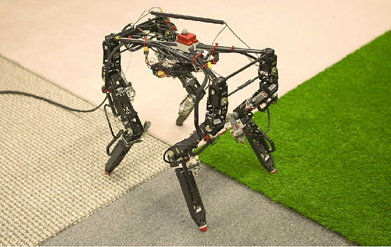 The-Dynamic-Robot-for-Embodied-Testing-D