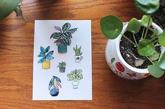 Lydia Joy Palmer Art Plant Stickers.jpg