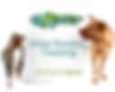 pet sitting, pet sitter, in home pet care, dog walking, pet boarding