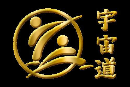 "4-Wk Course (Private w/Grandmaster Marco Sies) ""Uchudo Techniques & Curriculum"""