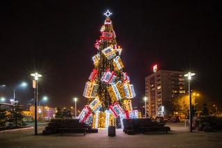 Present Box Tree